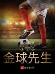 足球之金球先生小说阅读