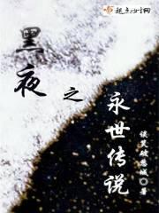 黑夜之永世传说小说阅读